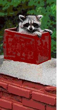chimneycoon4.jpg